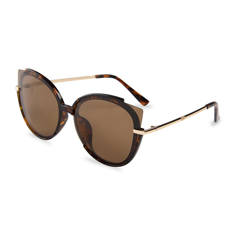 Tort Polarized Sunglasses -